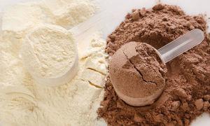 Что такое изолят сывороточного протеина