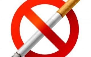 Капля никотина убивает лошадь. 10 фактов о курении