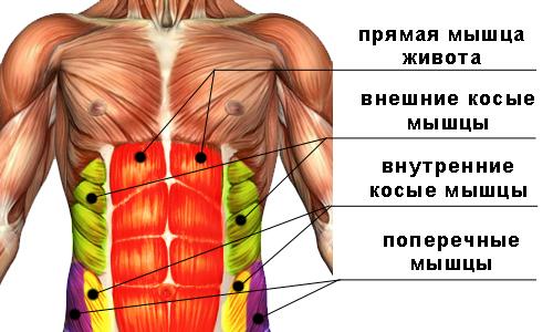 Растяжка мышц пресса
