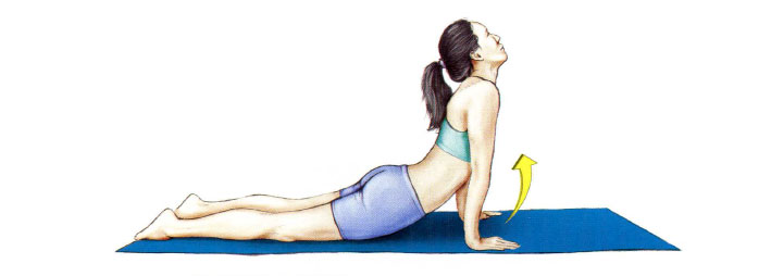 Растяжка мышц пресса лежа на животе