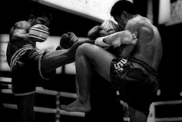 Тренировки по кикбоксингу: этапы проведения