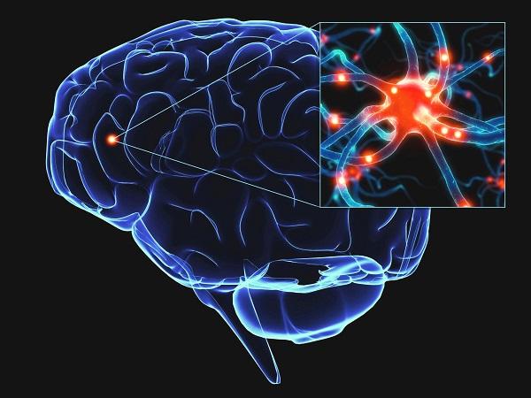 Роль сна в здоровье мозга
