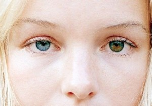 Хамелеон глаза