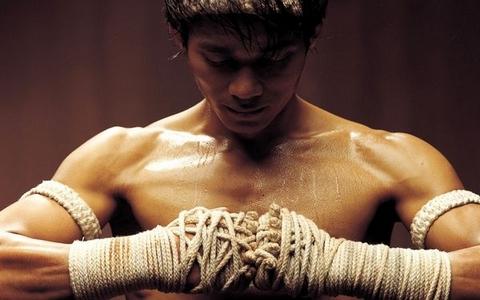 Смешанные боевые виды спорта